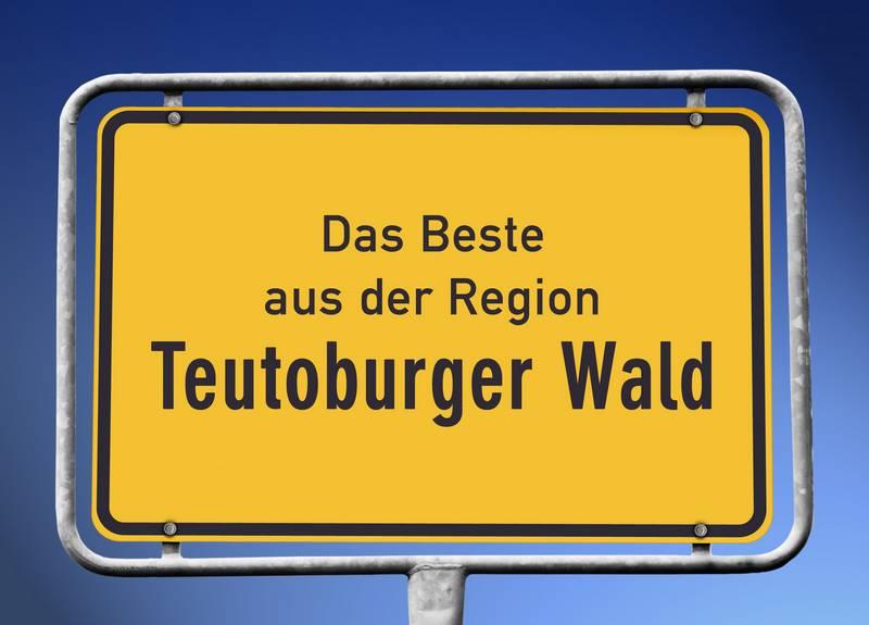 Sie suchen ein günstiges und schnelles Umzugsunternehmen mit viel Erfahrung, freundlichem Personal und einem guten Kundenservice? Bei CNolte Umzüge sind Sie genau richtig! Unsere Umzugsfirma hat bereits zahlreiche Umzüge in der Region Bad Driburg durchgeführt.