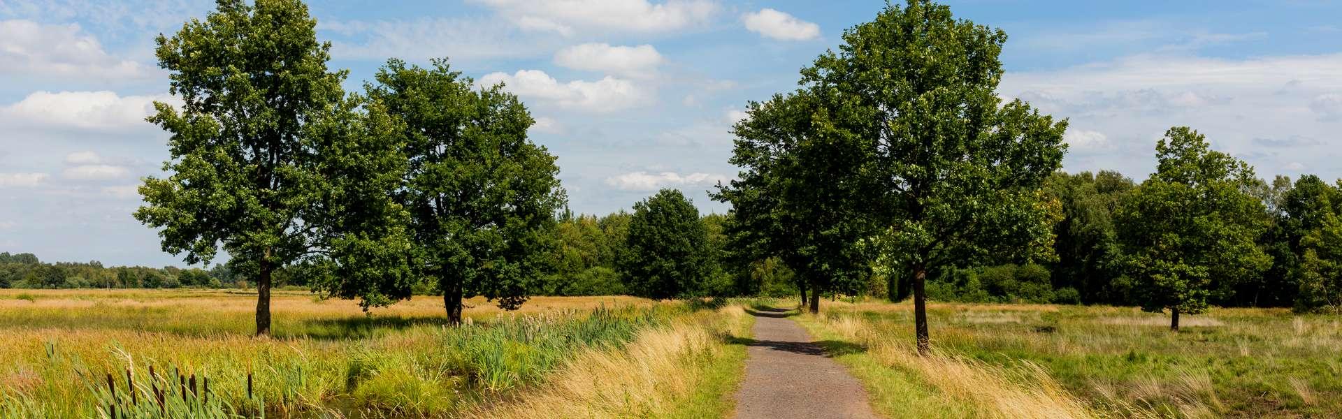 Slider Hille Moor Landschaft